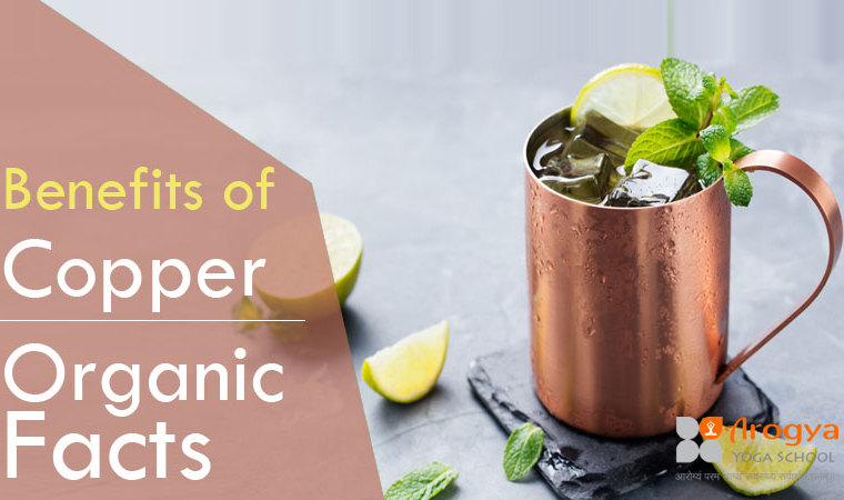 Health-Benefits-of-Copper---Organic-Facts