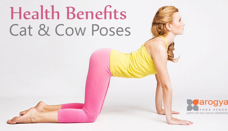 Health Benefits of Cat & Cow Poses