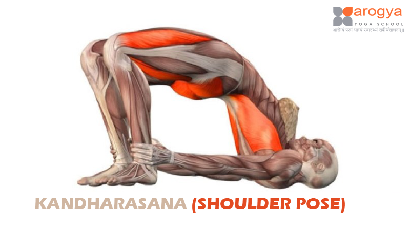 KANDHARASANA (SHOULDER POSE)