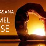 USHTRASANA-CAMEL-POSE
