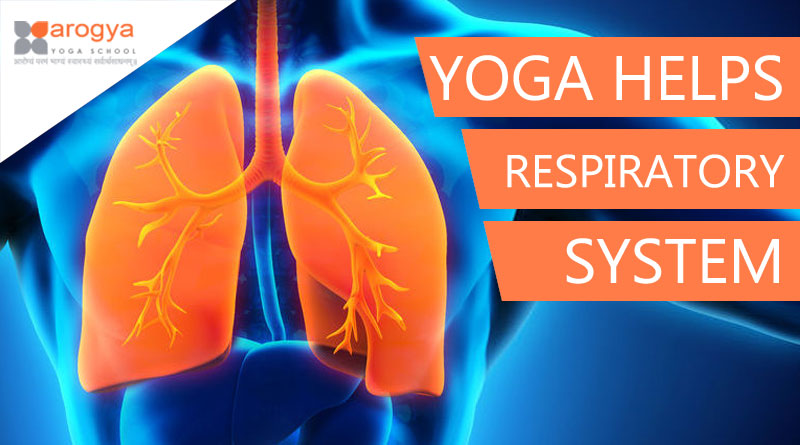 YOGA HELPS THE RESPIRATORY SYSTEM