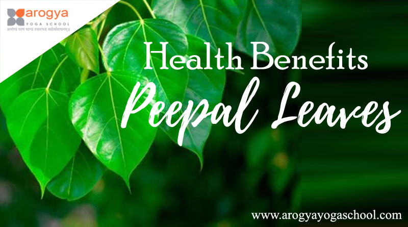 Health Benefits of Peepal Leaves