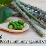 giloy Boost immunity against COVID-19