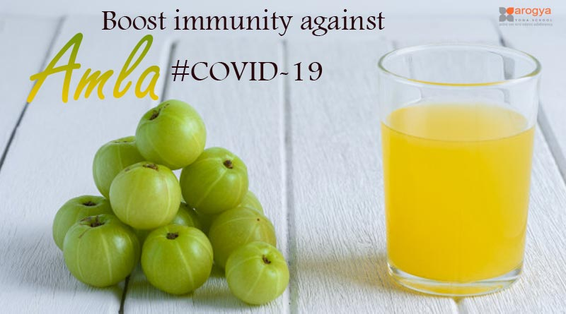 Amla Boost immunity against COVID-19